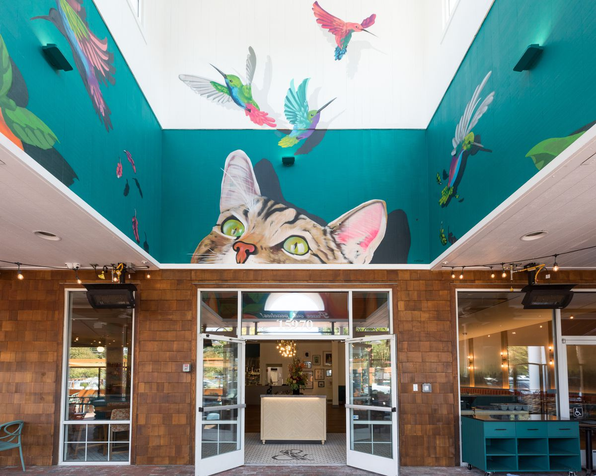 The entryway of Shepherd & Sims with a large mural of a cat's face looking up at colorful birds on a turquoise blue background.
