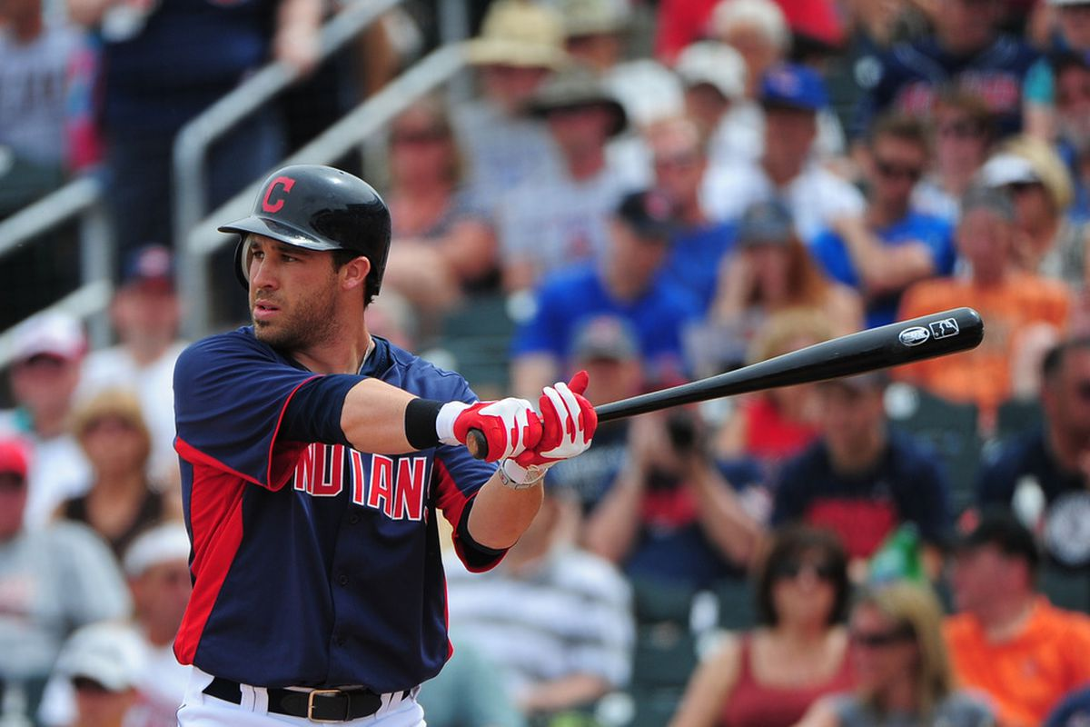 March 25, 2012; Goodyear, AZ, USA; Cleveland Indians second baseman Jason Kipnis (22) at bat during the second inning against the Chicago Cubs at Goodyear Ballpark. Mandatory Credit: Kyle Terada-US PRESSWIRE