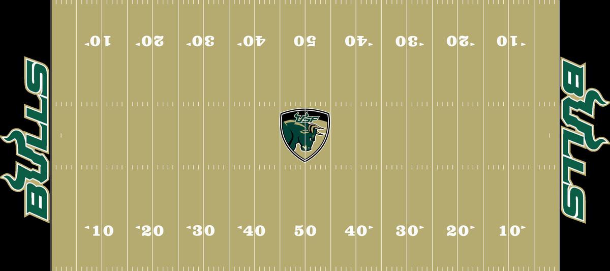 South Florida Field