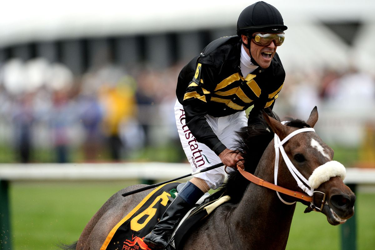 2013 Belmont Stakes: Picks and race preview - SBNation com