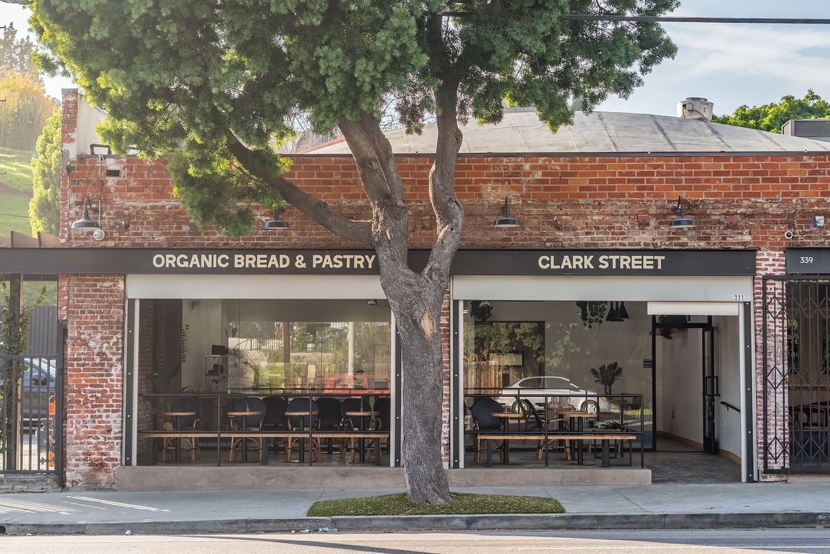 An exterior of a new bakery cafe with a tree sitting in the middle.
