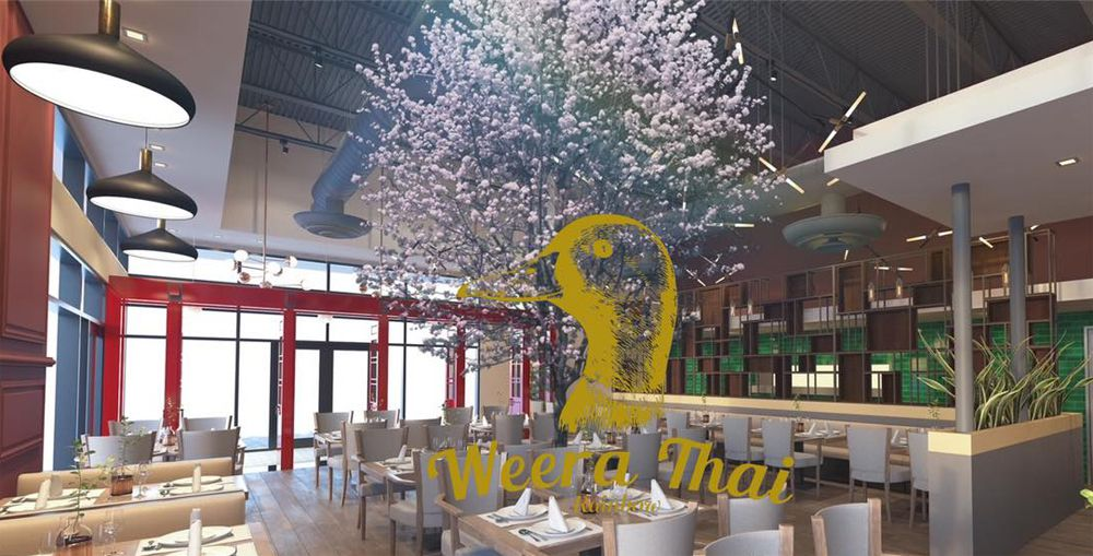 A rendering of the future Weera Thai dining room, promised to be coming soon to Rainbow Boulevard.