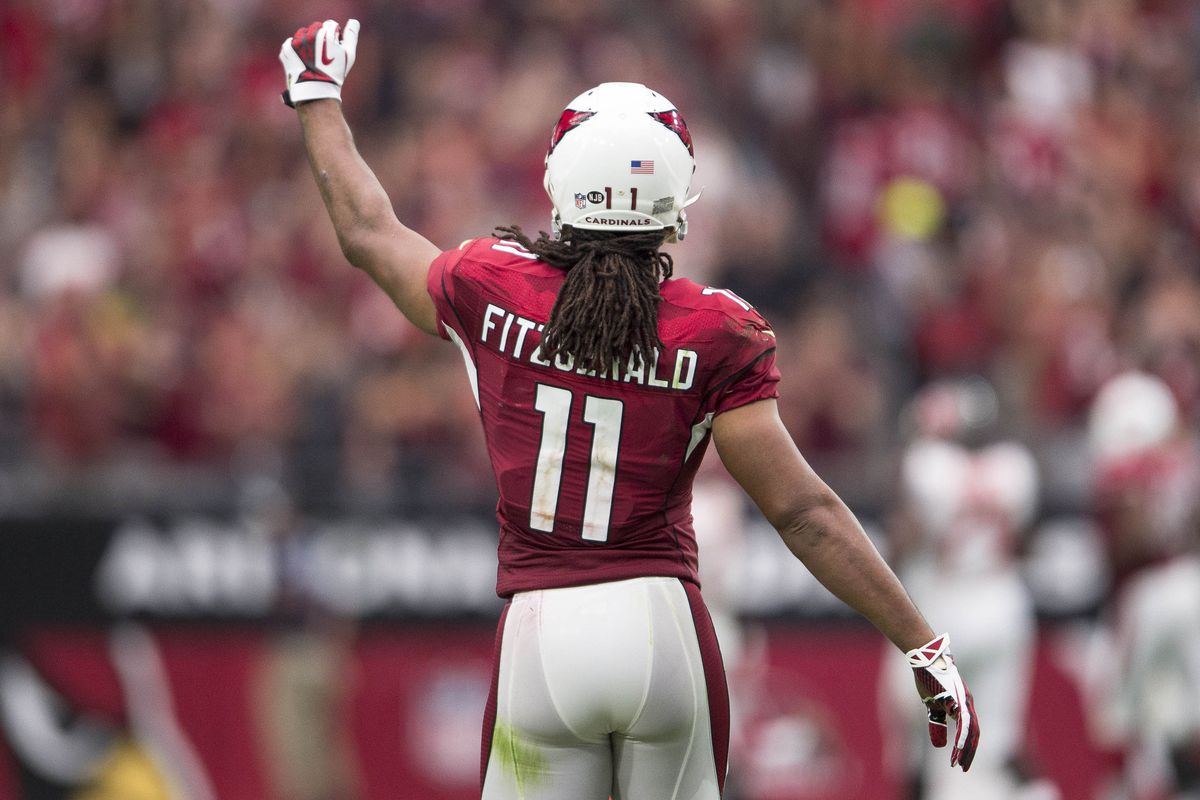 Larry Fitzgerald is Best Slot Receiver in NFL Revenge of the Birds