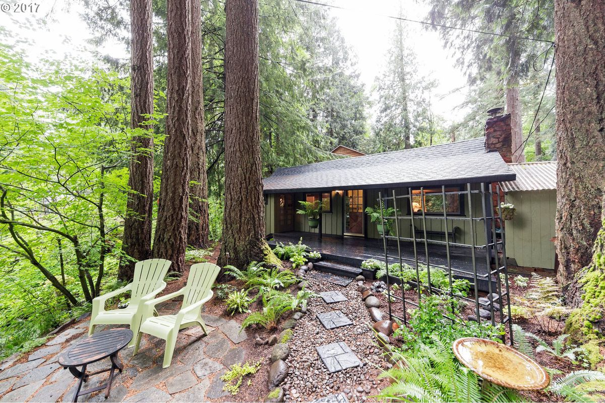 Adorable cabin in the woods features creek for 225k curbed for Cabin in the woods oregon