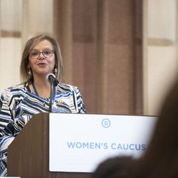 Rep. Robin Kelly D-Il speaks at the Women's Caucus at the Democratic National Committee summer meeting in Chicago on August 24, 2018.   Colin Boyle/Sun-Times