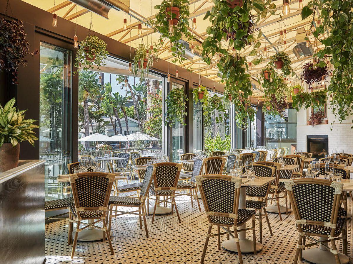 The interior of a leafy restaurant in Santa Monica, California.