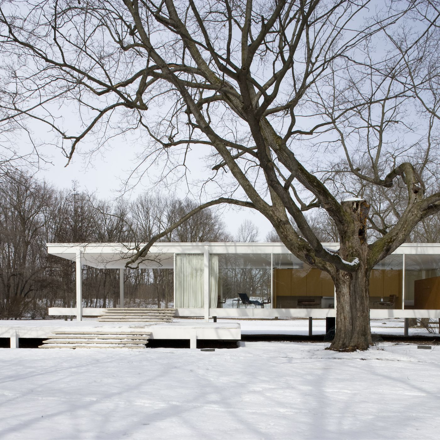 Chicago Mies Van Der Rohe Tour tour mies van der rohe's farnsworth house in all its winter
