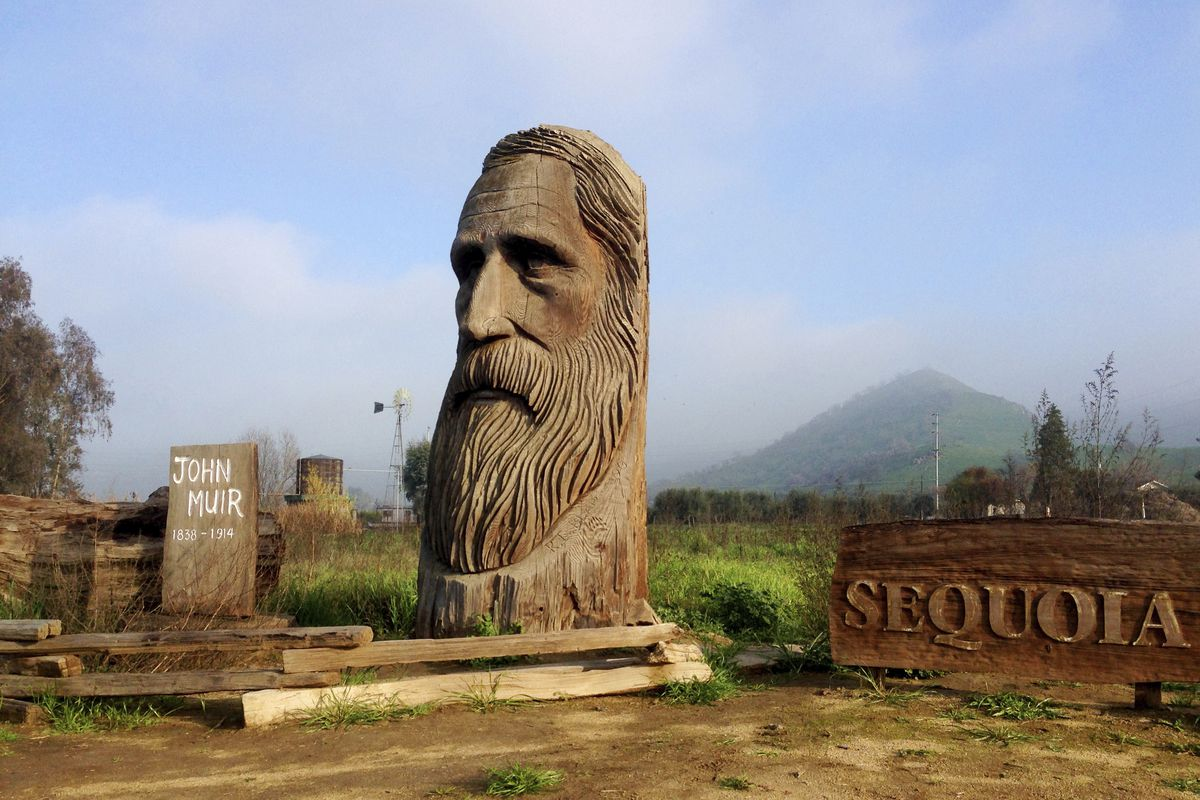 A wood-carved statue of John Muir by R.L. Blair is seen on the road leading to Sequoia National Park near the city of Woodlake, Calif., Jan. 17, 2015. The Sierra Club is reckoning with the racist views of founder John Muir, the naturalist who helped spawn environmentalism. The San Francisco-based environmental group said Wednesday, July 22, 2020 that Muir was part of the group's history perpetuating white supremacy. Executive Director Michael Brune says Muir made racist remarks about Black people and Native Americans, though his views later evolved. (AP Photo/Brian Melley) ORG XMIT: RPBM301