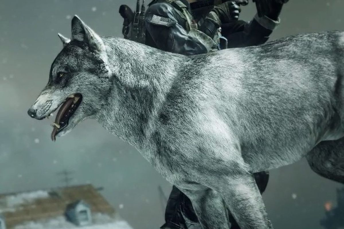 Turn call of duty ghosts dog killstreak into a wolf dec 12 polygon the xbox 360 and xbox one versions of call of duty ghosts will offer a new kind of canine companion tomorrow dec 12 with wolf dlc for the games publicscrutiny Images