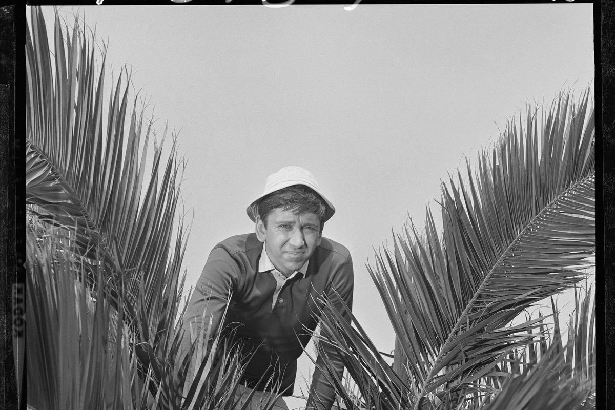 Bob Denver In 'Gilligan's Island'