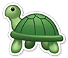 Frank Turtle
