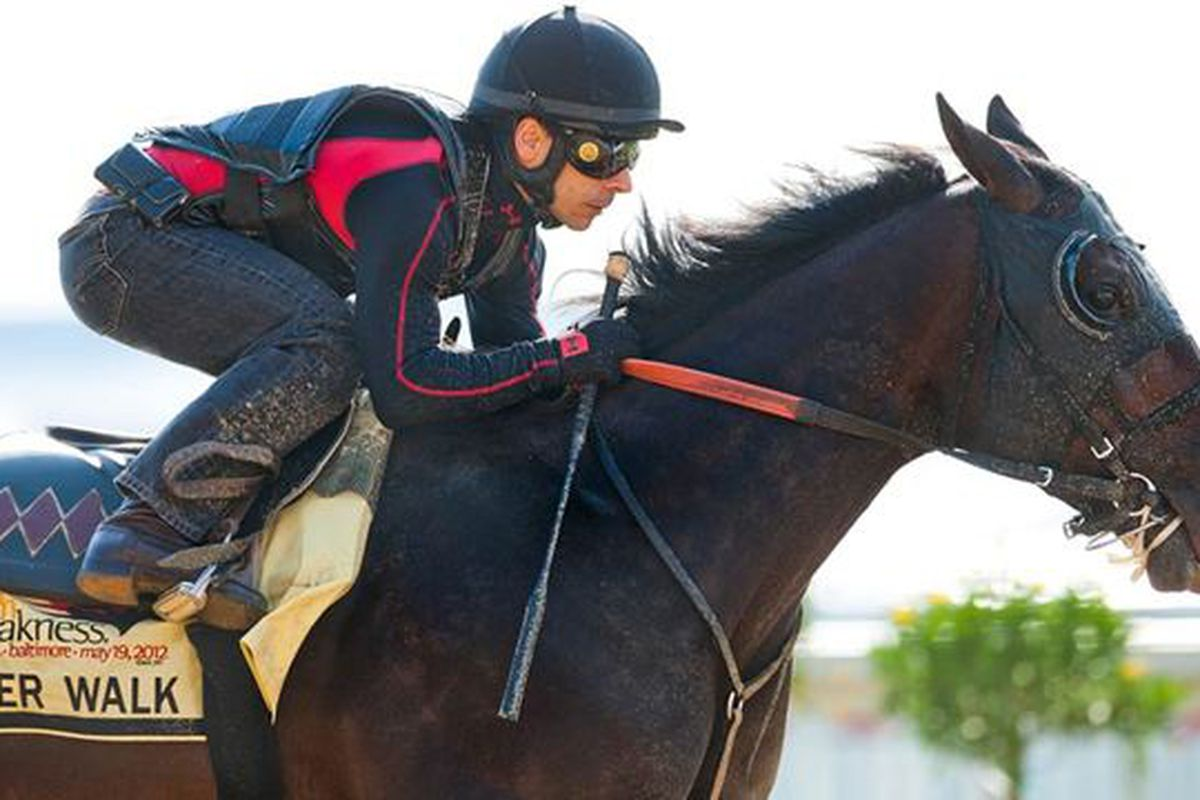 """Tiger Walk drew the number one post for position in today's Preakness Stakes at Baltimore's <a href=""""http://www.pimlico.com/"""">Pimlico Park Race Track</a>. (<em>photo,eclipse sportswire</em>)"""
