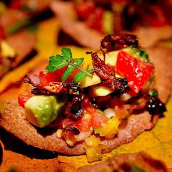Local crickets and wild seeds crackers by @LA_Chefs