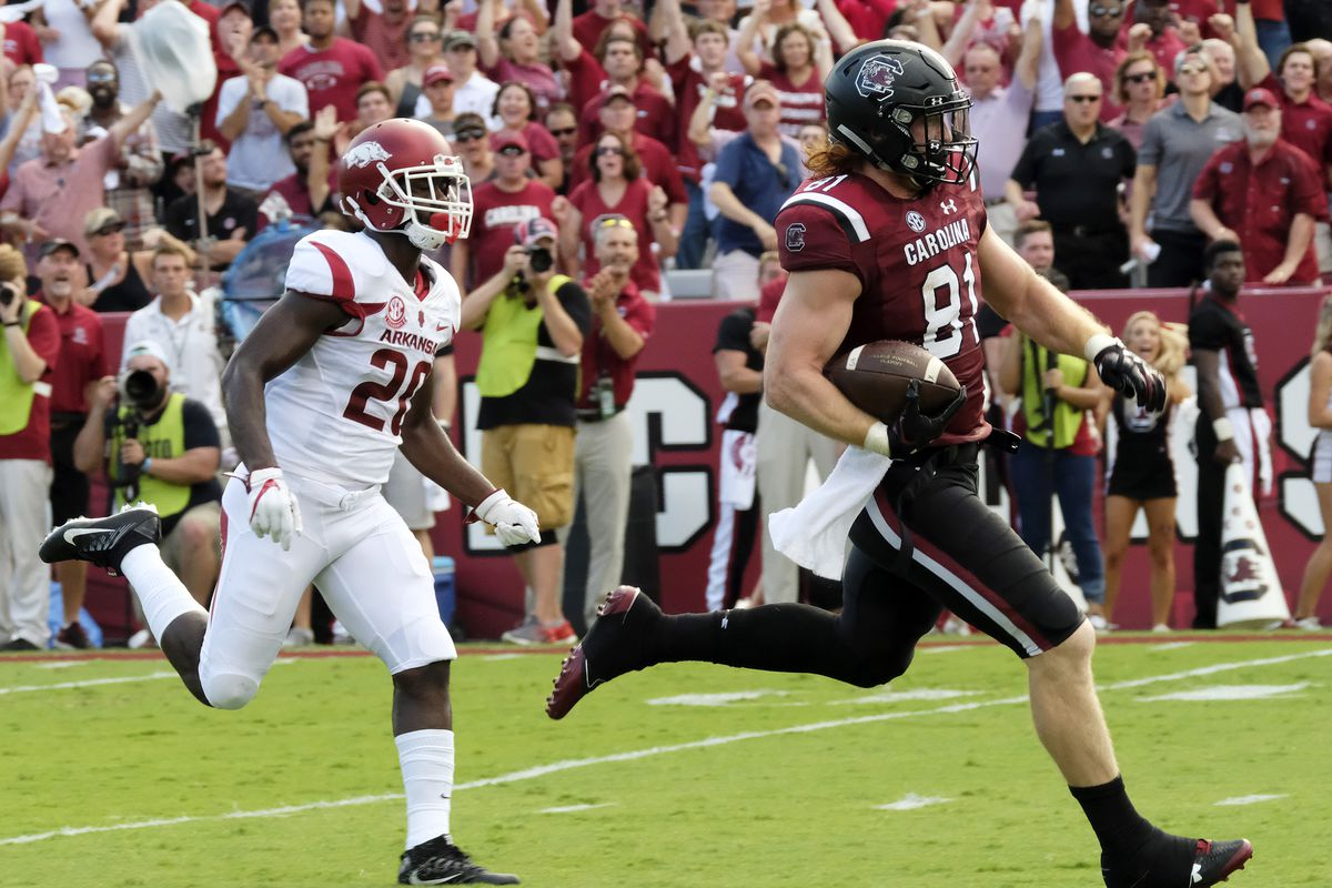 COLUMBIA, SC - South Carolina Gamecocks tight end Hayden Hurst (81) walks in for a touchdown after separating from Arkansas Razorbacks defensive back De'Andre Coley (20) in coverage during a game at Williams-Brice Stadium.