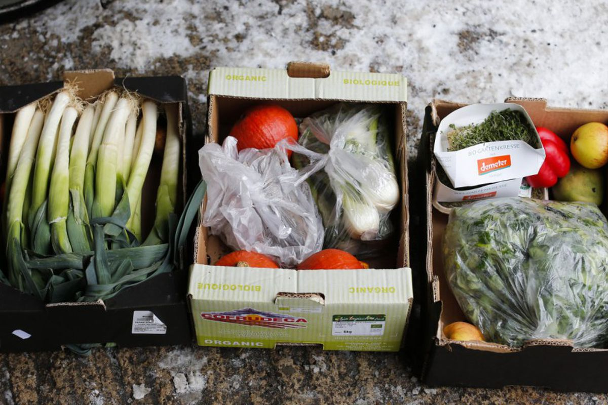 Vegetables pulled from the trash of an organic supermarket.