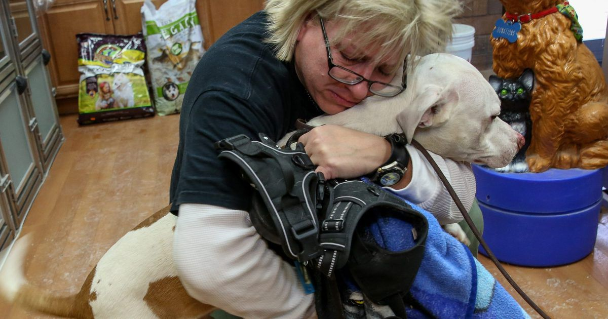 Sherie Gechas of Lisle reunites with her dog, Jackson, at DuPage County Animal Services