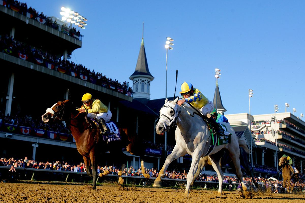 Union Rags and Hansen in the 2011 Breeders' Cup Juvenile at Churchill Downs.