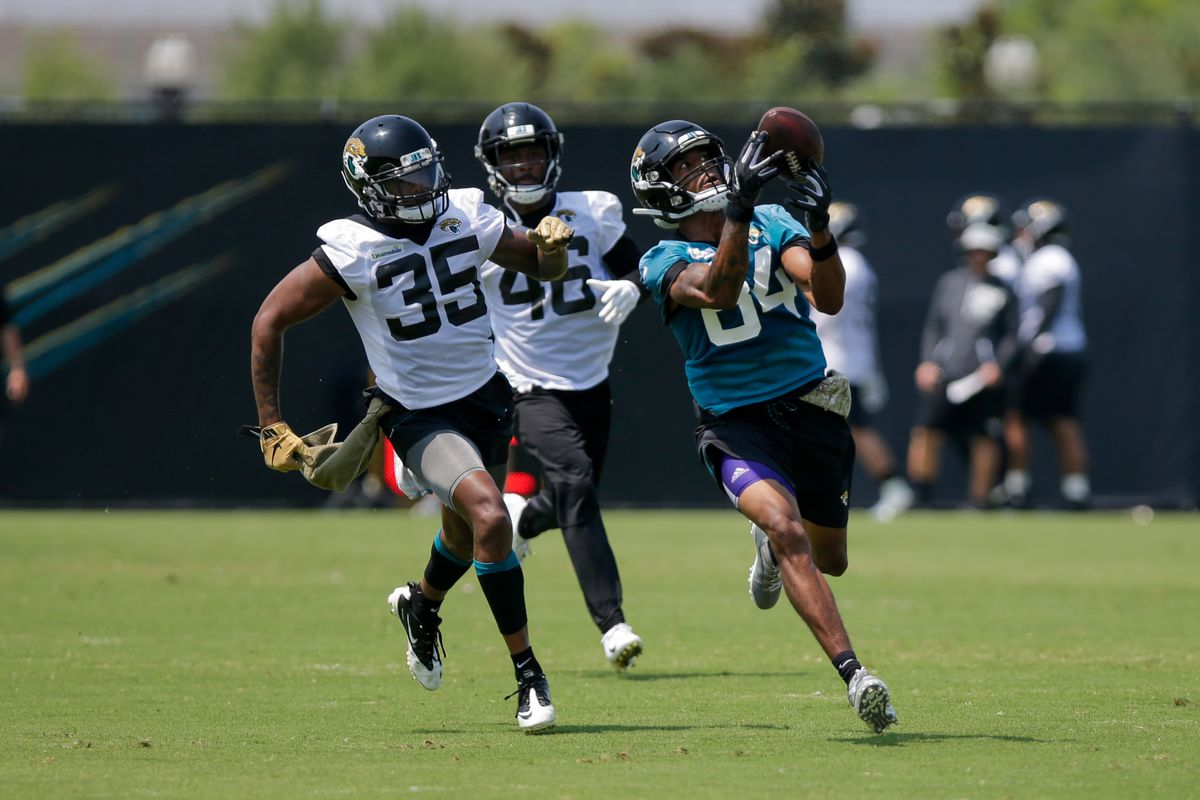 competitive price d7ef2 d1676 2019 Jacksonville Jaguars training camp: 7 practices open to ...