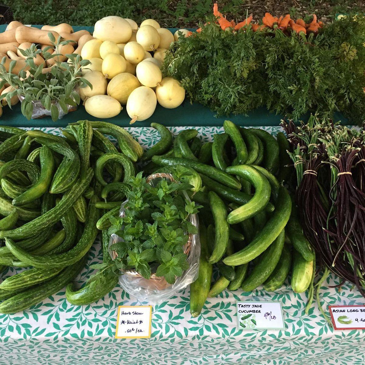Vegetables at Boggy Creek Farm
