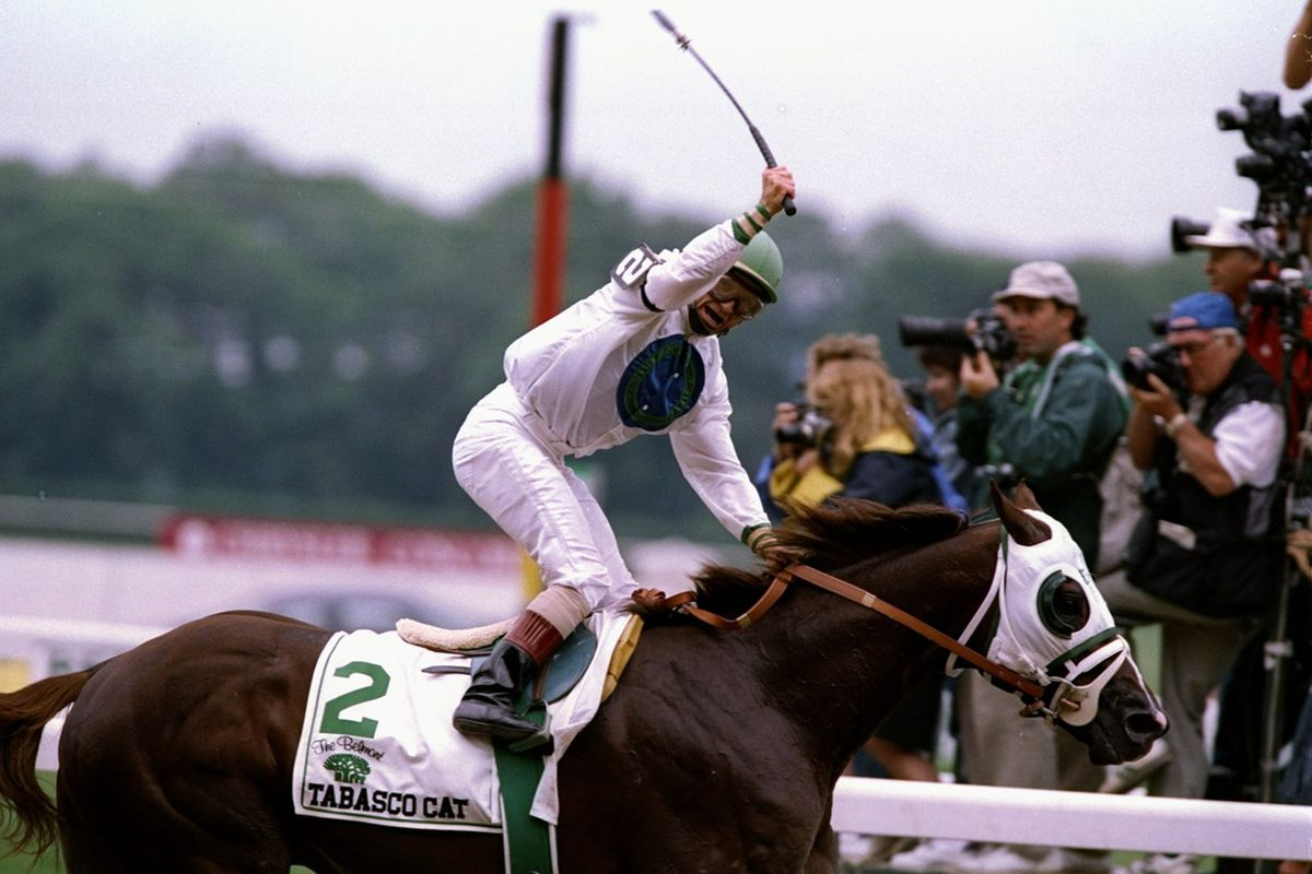 Tabasco Cat winning the Belmont Stakes; just one of Storm Cat's successful offspring.