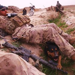John Logie works with his K9 partner Balto in Afghanistan. In May 2010 Logie was in Afghanistan working as a contractor and was injured by an IED. Balto pulled him away from the primary IED which would have killed him.