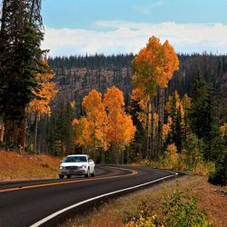 A car drives through the fall colors along the state Route 148 on the way to Cedar Breaks National Monument.