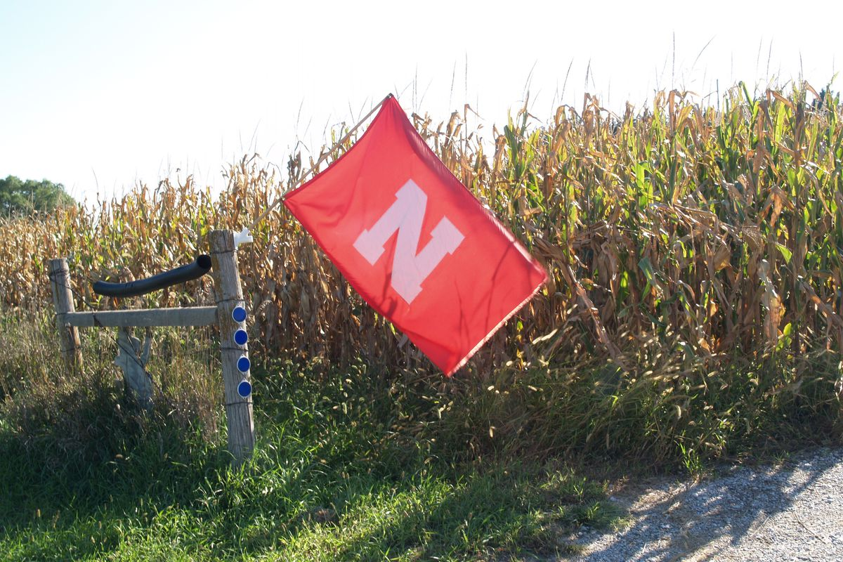 Flag in cornfield