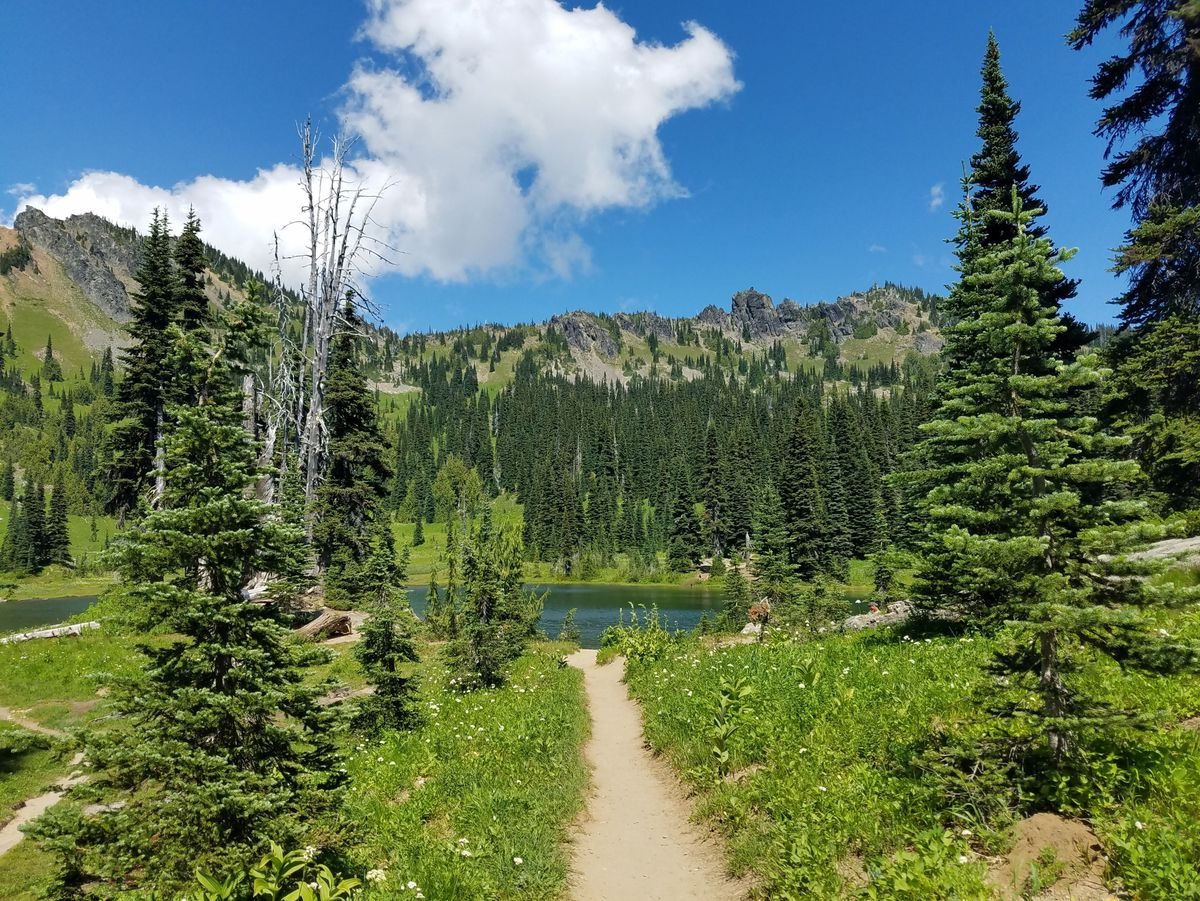 On a sunny day, a dirt trail in the center of the frame leads to a lake surrounded by mountains and trees. On either side of the path are grass and trees.