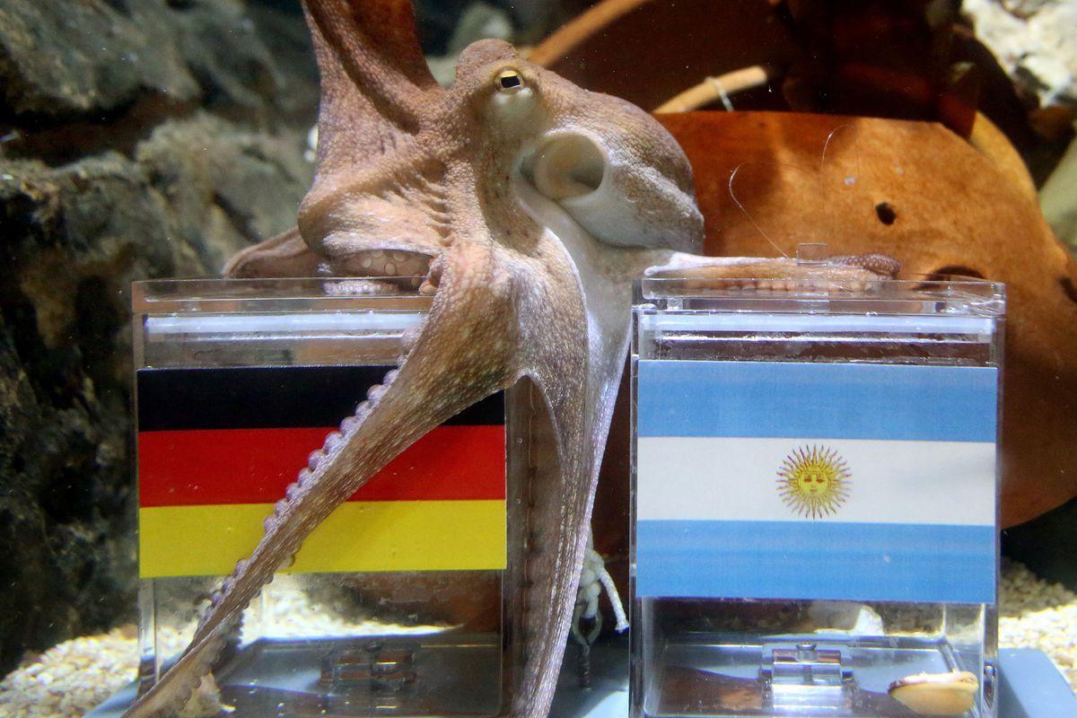 GERMANY-THEME-FOOTBALL-FBL-WC-2014-GER-ARG-OFFBEAT
