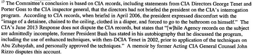 Bush torture report diaper
