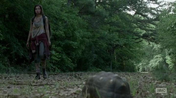 Enid eats a turtle on The Walking Dead.
