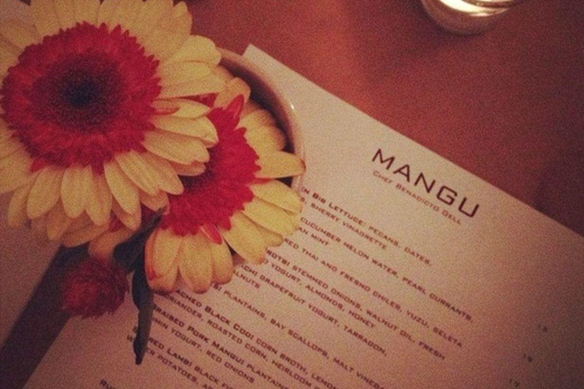 Mangu, the new pop-up inside Capri, Venice.