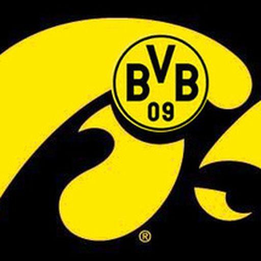BVB_Hawk