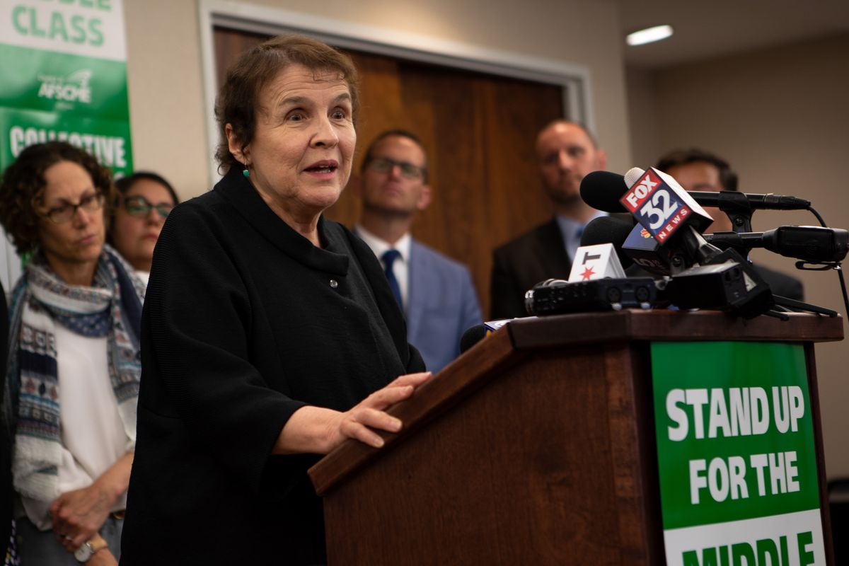 AFSCME Council 31 executive director Roberta Lynch speaks at a July 2018 press conference.