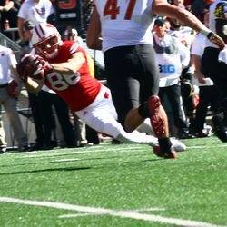 Alex Erickson dives for a pass