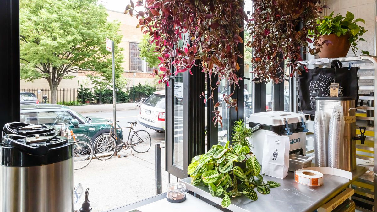 A photograph of a sidewalk from inside of a cafe, with coffee, potted plants, a few pastries available on a counter
