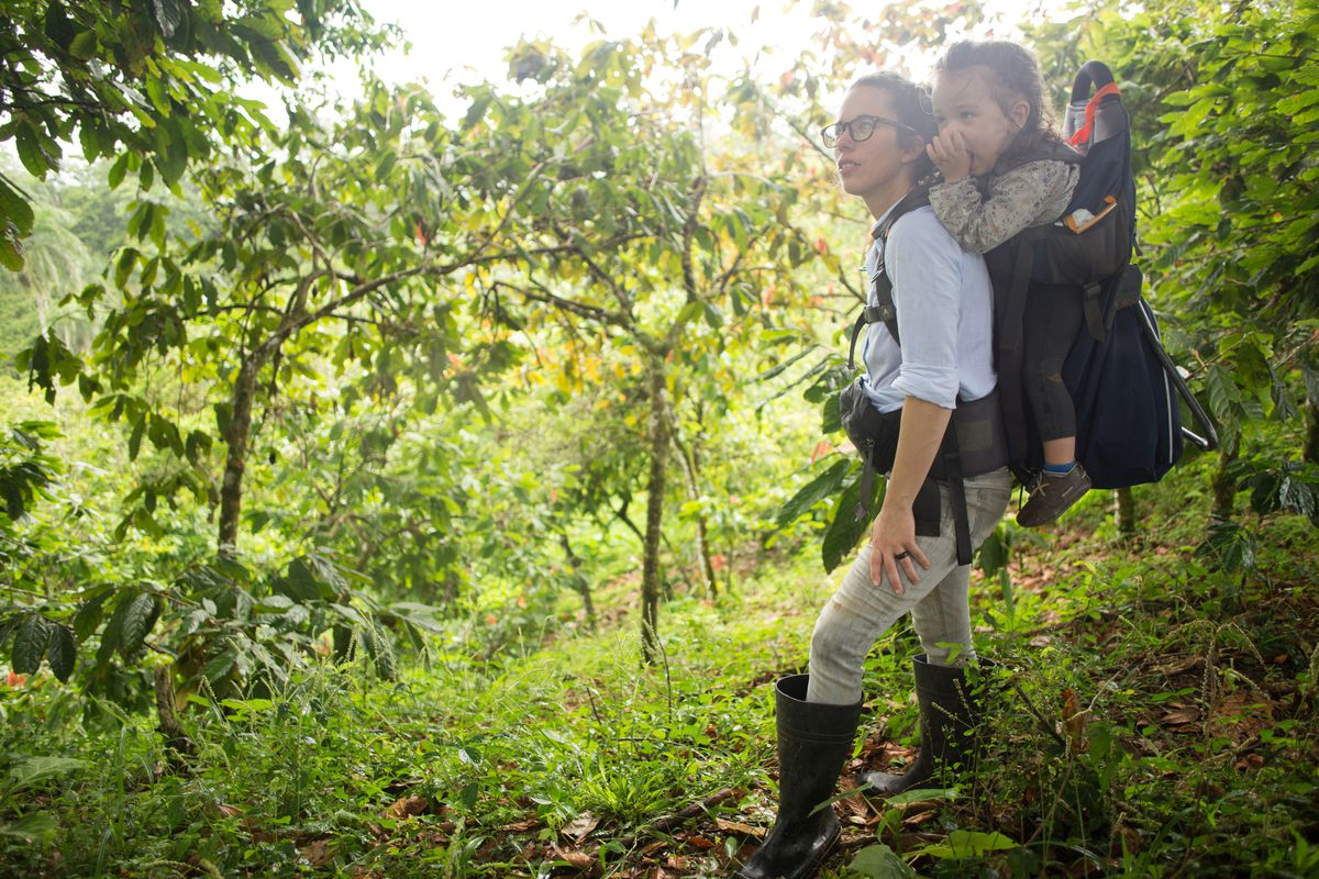 Catherine Goulet walking through a cacao plantation with a baby on her back.