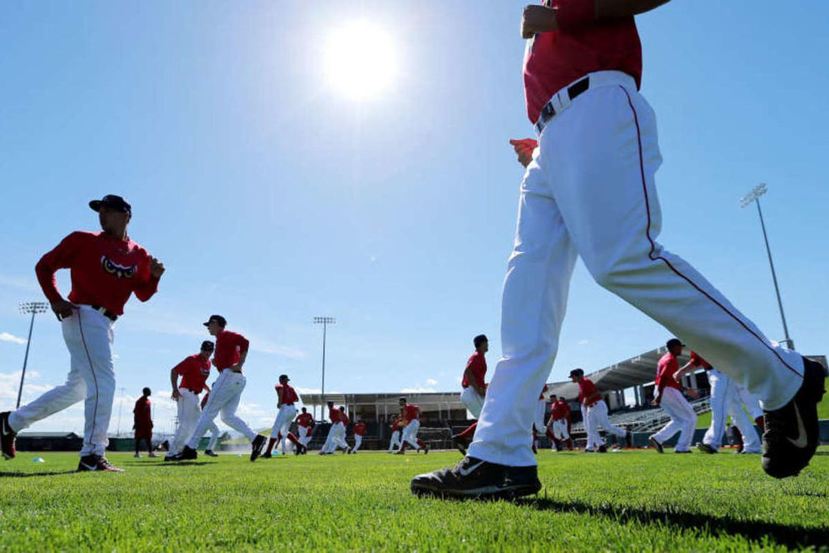 Orem Owlz players get ready for a workout during media day Saturday, June 14, 2014, at Brent Brown ball field.