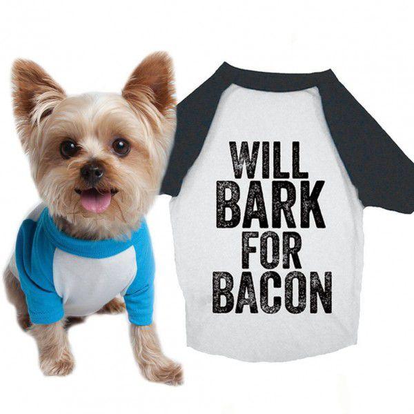 bark for bacon