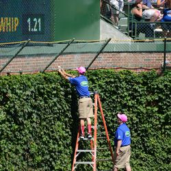 2:20 p.m. Another ball being removed from the basket, at the end of batting practice -
