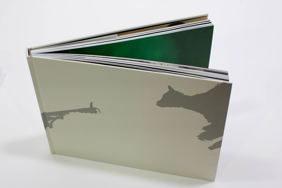 The Last Guardian: An Extraordinary Story companion book - top view without dust jacket
