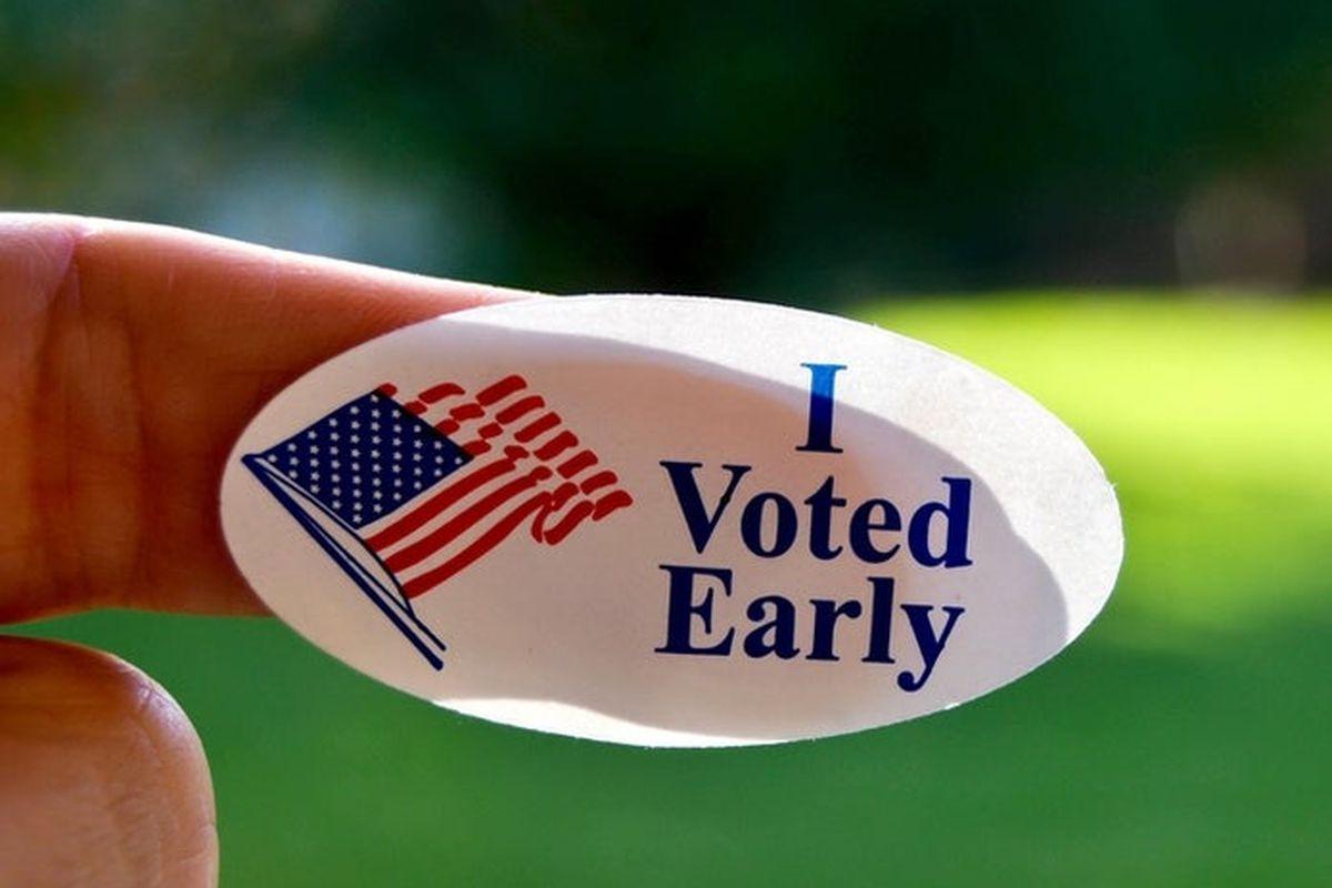 Vote Early sticker