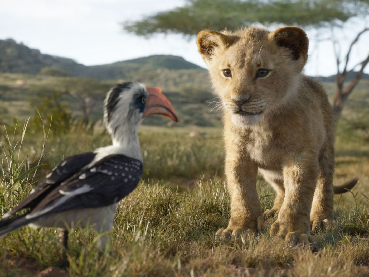Lion King 2019 review: Disney's live-action update is pretty
