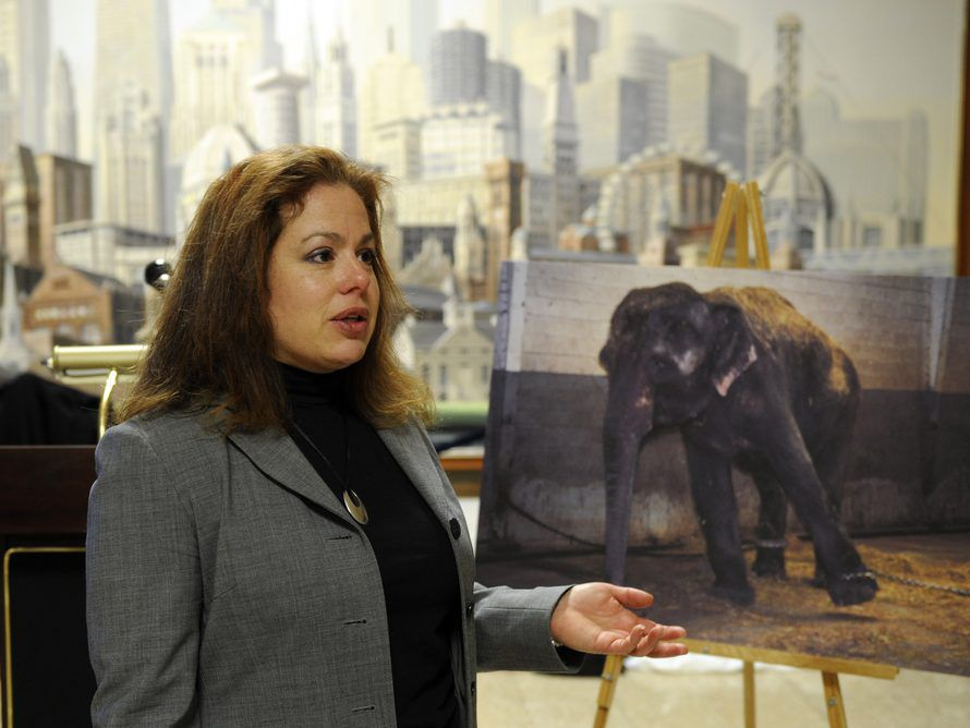 Cherie Travis in 2008. (File Photo by John H. White/Chicago Sun-Times)