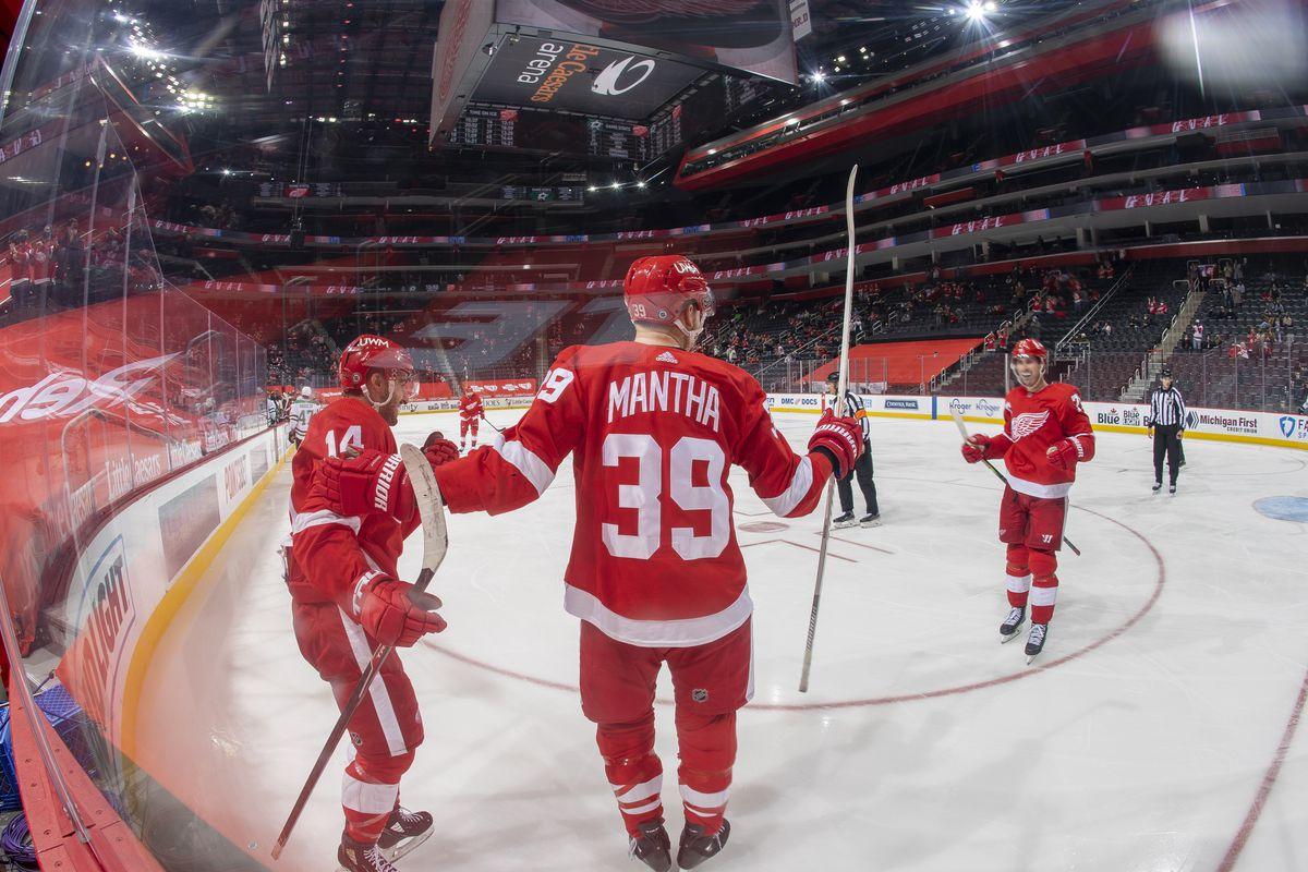 Dallas Stars v Detroit Red Wings