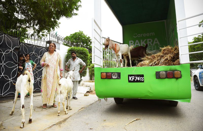 careem_goats_on_wheels Why innovative tech startups are thriving across the Middle East