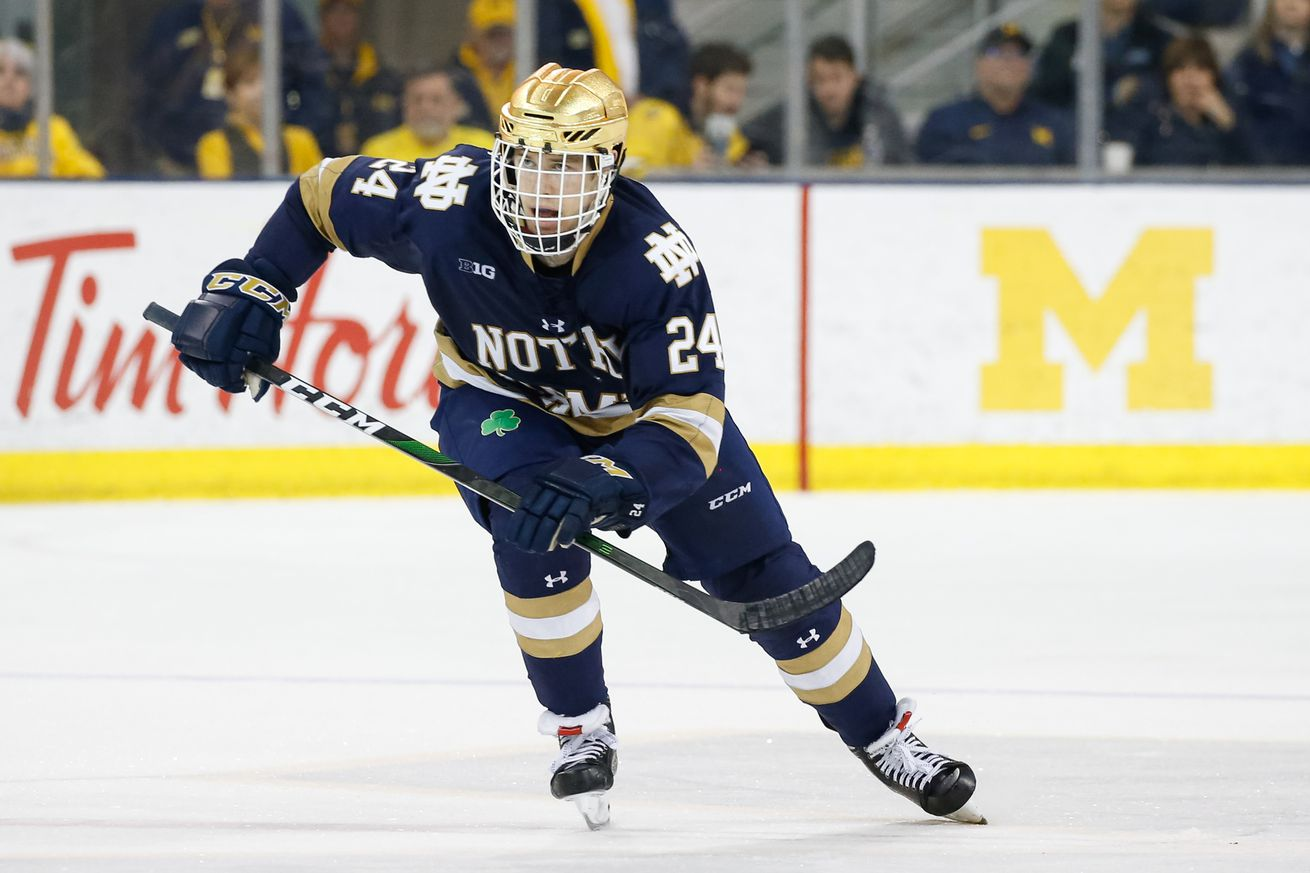 COLLEGE HOCKEY: FEB 22 Notre Dame at Michigan