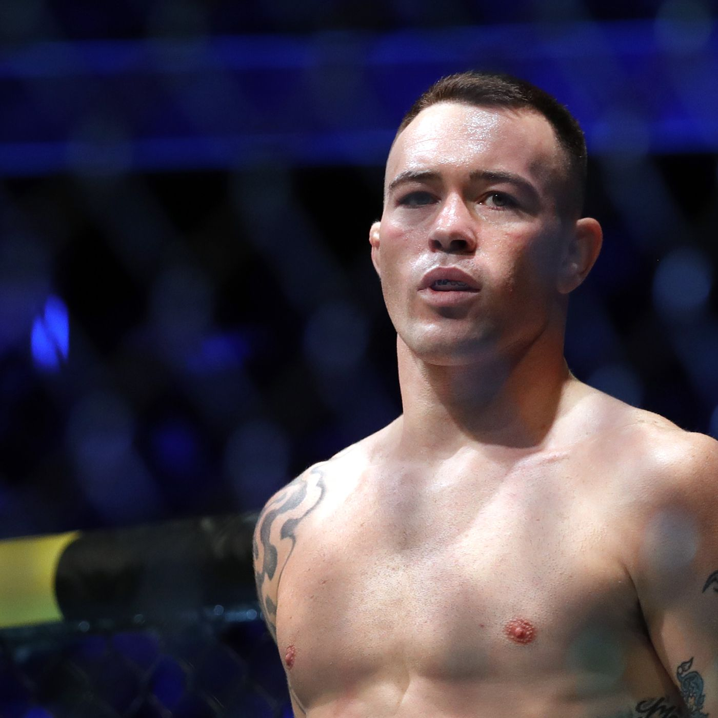 Ufc Vegas 11 Covington Vs Woodley Previews Predictions Play By Play Analysis Highlights More Bloody Elbow