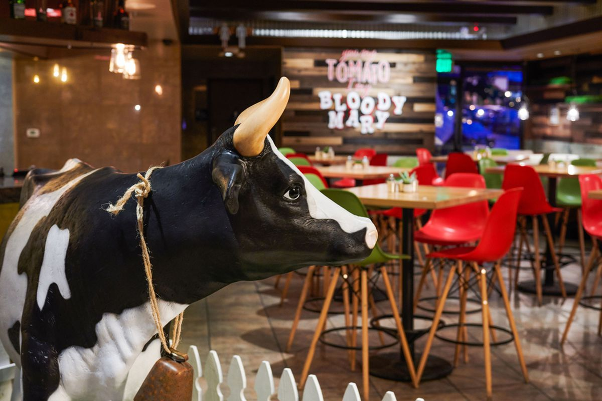 Maizy the cow sculpture inside San Diego's new breakfast and lunch restaurant.