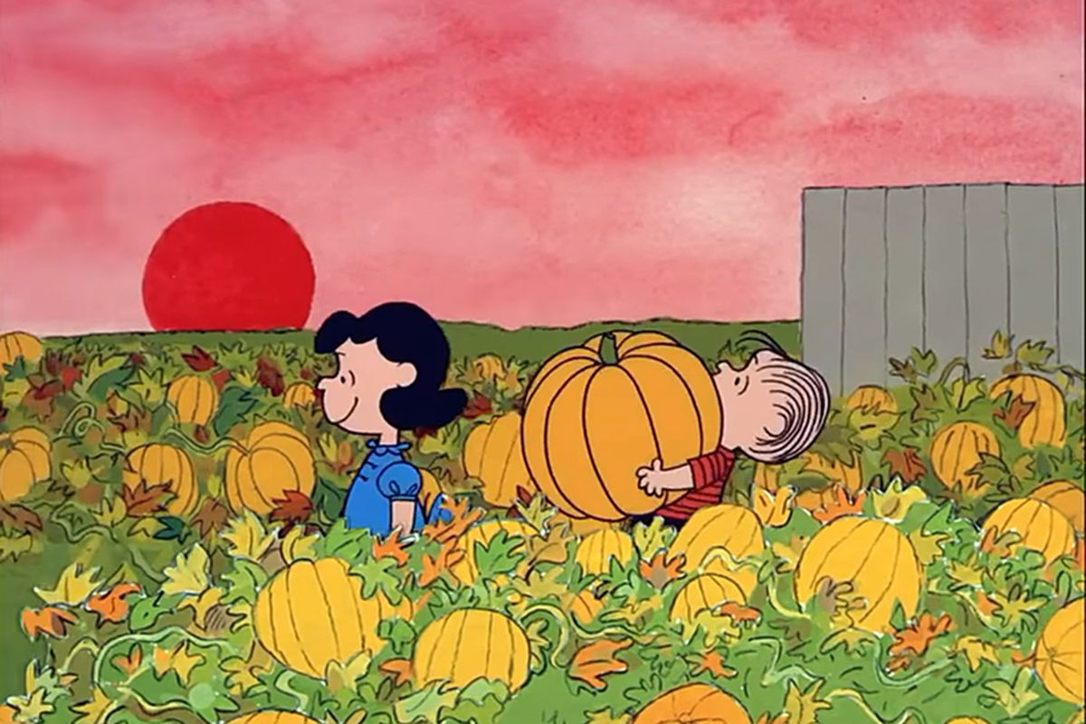 lucy and linus in the pumpkin patch